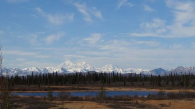 Mt. Denali van zuidkant gezien