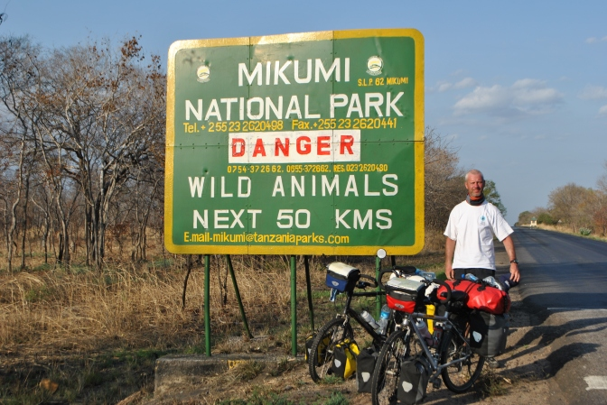 Slalommen tussen buffels en olifanten (Tanzania okt '11)